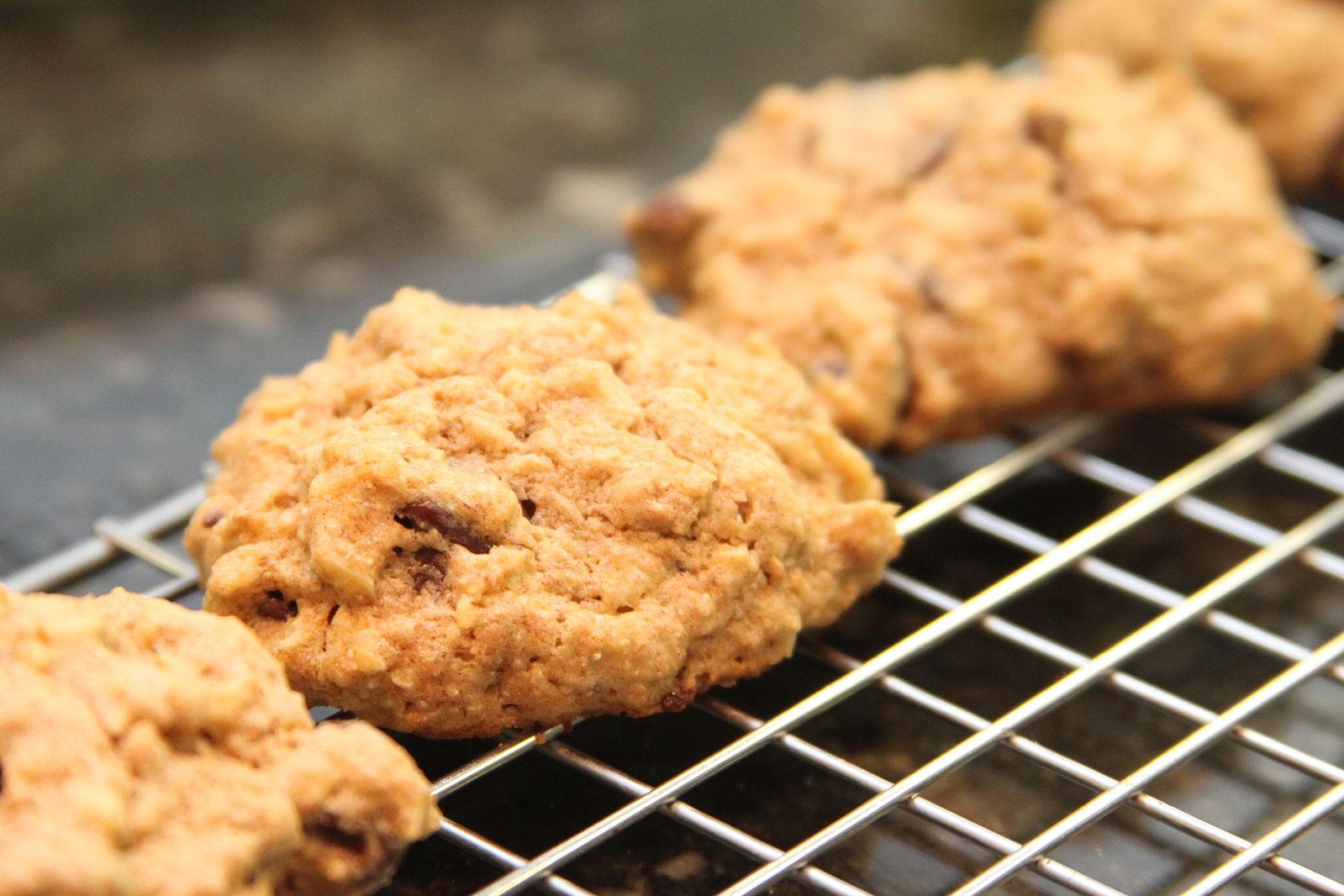 healthy oatmeal kaptiva cookies